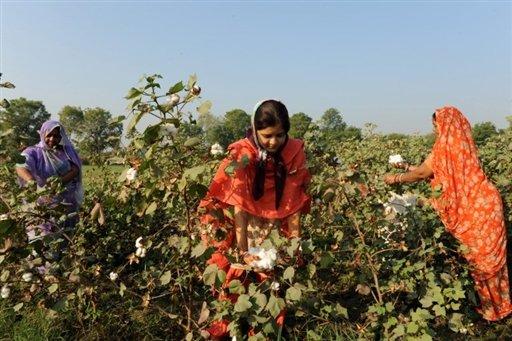 La Cour Suprême de l'Inde confirme l'importance de la biosécurité