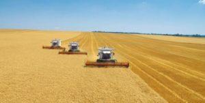 Villages argentins pulvérisés par des pesticides  – 2011