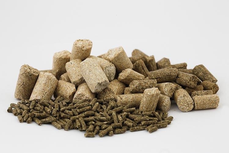 Les tests pour la commercialisation de produits chimiques et d'OGM sont faussés par l'alimentation des rats de laboratoire
