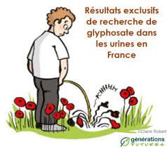 Du glyphosate dans nos urines