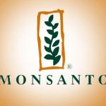 Monsanto Papers, épisode 3 : les auteurs fantômes