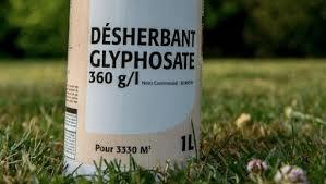 Comment remédier aux normes de sécurité des herbicides à base de glyphosate ?