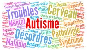 """""""L'autisme à la croisée de plusieurs voies de recherche"""" par Dominique Béroule – décembre 2018"""