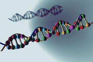 Forçage génétique : crowdfunding pour réalisation d'une grande enquête par Inf'OGM